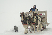 Winter sleigh ride in Teton Valley Idaho