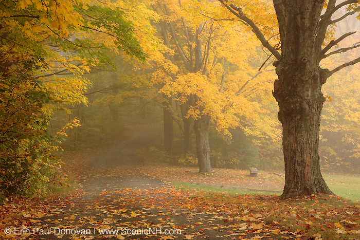 Foggy conditions at South Side Cemetery in Nottingham, New Hampshire during the autumn months