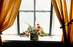 Flowers on windowsill