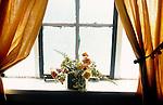 Flowers on windowsill