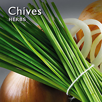 Chives Pictures | Chives Photos Images & Fotos