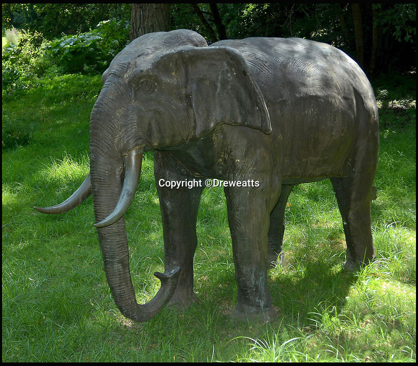BNPS.co.uk (01202 558833)<br /> Pic: Dreweatts/BNPS<br /> <br /> A bronze elephant estimated at &pound;6,000.<br /> <br /> A remarkable collection of giant bronze animals has emerged for auction and is tipped to sell for &pound;40,000.<br /> <br /> The menagerie of exotic animals includes a 7ft tall giraffe, a 9ft long elephant and a 1,800lb stag.<br /> <br /> Also included in the collection are a lion, a cheetah, a panther, a rhinoceros, a hippopotamus, a crocodile, a deer, a wild boar, a horse and various bronze birds.<br /> <br /> They were consigned by a vendor in Berkshire who collected the bronze animals with her late husband over the course of 20 years.