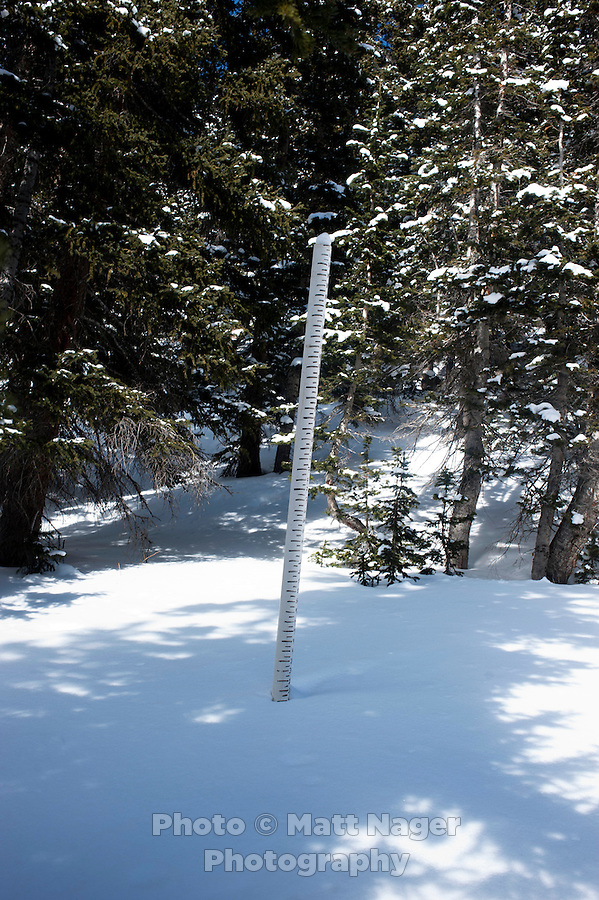 A measuring stick for snow pack near Coon Hill around Summit County in Colorado, Thursday, February 16, 2012. Tests at this area showed that there was a fairly hard slab of snow resting on weaker snow beneath making conditions which can lead to avalanches...Photo by Matt Nager