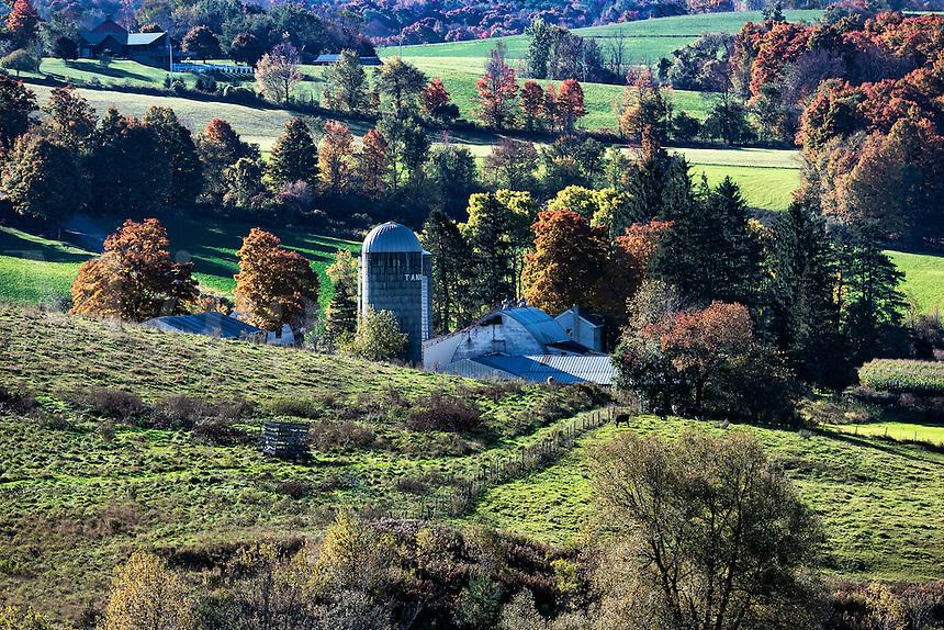 Scenic autumn farm, Madison, New York, USA