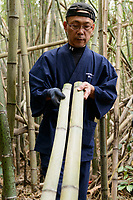Reimei Yokoyama checking bamboo to see if is suitable for bow making. Yokoyama Reimei Bowmakers, Miyakonojo, Miyazaki Prefecture, Japan, December 23, 2016. A handful of bowyers from the Kyushu city of Miyakonojo make over 90% of all the bows used in traditional Japanese archery. The bows are made from laminated bamboo and haze wood in process that consists of over 200 individual tasks. At over two meters from tip to tip the bows the longest used in the world.