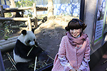 Tetsuko Kuroyanagi, actress and honorary chairwoman of the Panda Protection Institute of Japan, poses for photographs beside a female giant panda Shin Shin at Ueno Zoo in Tokyo, Japan on March 12, 2018. (Photo by Koji Aoki/AFLO)