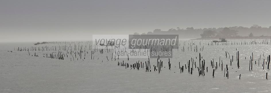 Europe/France/Aquitaine/33/Gironde/Bassin d'Arcachon/Le Cap Ferret: Les parcs à huîtres, et en fond la Dune du Pyla