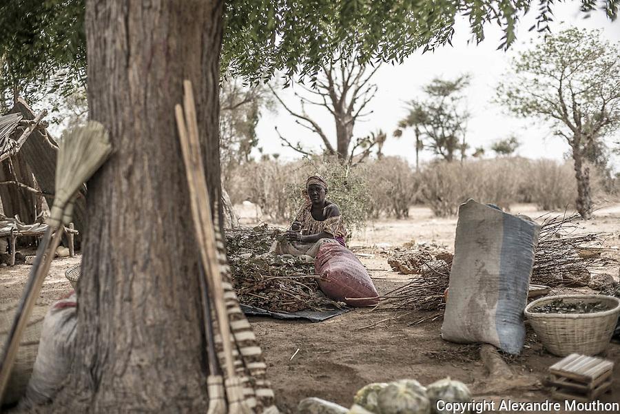 En ce mois de mai 2016, entre l'effervescence dakaroise et le silence des ruines, entre grève estudiantine et Biennale d'art contemporain, entre nostalgie et espérance, cette femme, assise au bord de la route, traverse le temps. Faut-il s'enthousiasmer de la redécouverte de l'aventure solaire du Sénégal des années 1970 et, déjà, de ses nombreux rêves et de ses promesses ? Ou s'indigner de cet « oubli » de quarante ans et des trappes de notre histoire ? Si les difficultés matérielles rendent les étudiants réalistes sur leur sort et sur celui de leur pays, on ne peut ignorer la flamme qui les anime. Jean-Pierre Girardier leur a transmis son rêve. Cette Afrique là, dorénavant, croit au soleil.