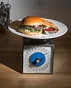 Lamb Burger, Bleu Olive Mediterranean Bistro & Cafe, 1821 Hillandale Road, Durham, N.C, Monday, Jan. 28, 2013.