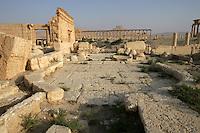Senate, 2nd century AD, under Septimius Severus, Roman emperor, 193-211 AD, Palmyra, Syria Picture by Manuel Cohen