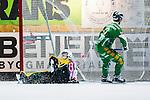 Stockholm 2013-12-03 Bandy Elitserien Hammarby IF - Ljusdals BK :  <br /> Hammarby David Pizzoni Elwing g&ouml;r 4-1 bakom Ljusdal m&aring;lvakt Jonas Svensson<br /> (Foto: Kenta J&ouml;nsson) Nyckelord: