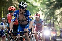 Yves Lampaert (BEL/Deceuninck - Quick-Step)<br /> <br /> Stage 5: Saint-Dié-des-Vosges to Colmar(175km)<br /> 106th Tour de France 2019 (2.UWT)<br /> <br /> ©kramon