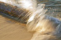 A small wave breaks over a log on the Lake Superior shore at Miner's Beach in Pictured Rocks National Lakeshore, Alger County, Michigan