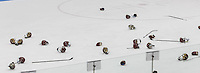 Boston, Massachusetts - February 9, 2016: NCAA Division I, Beanpot Tournament final. Boston College (maroon) defeated Northeastern University (white/black), 7-0, at Walter Brown Arena. Beanpot victory celebration.