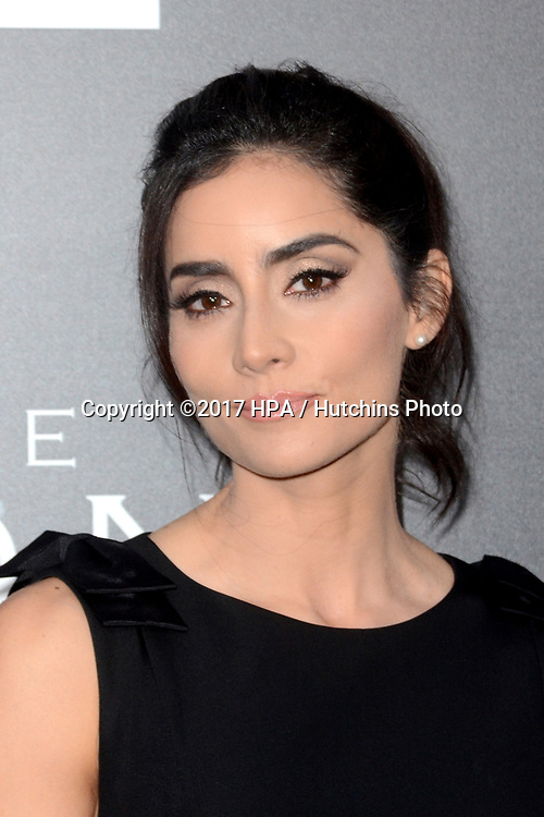 """LOS ANGELES - APR 3:  Paola Nunez at the AMC's """"The Son"""" Season One LA Premiere at ArcLight Theater on April 3, 2017 in Los Angeles, CA"""