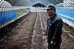 Iitate, April 28 2011 - .(eng) Katsuo Abe stands in front of his tomatoes field..Located more than 30km from the plant, Iitate village was not evacuated initially by the government..The days after the accident, radioactivity spread in the area because of snow and winds. On April 22, the village was asked to evacuate before the end of May..Katsuo's family was growing rice and tomatoes for 4 generations. He is now really worrying about the futur : without fields and at 62, he won't be able to work any more...(fr) Katsuo Abe debout devant son champ de tomates. .Situé à plus de 30km de la centrale, le village d'Iitate n'a pas été évacué par les autorités après la catastrophe nucléaire. Mais les vents et la neige ont ramené de nombreuses particules radioacives dans les jours qui ont suivi l'accident. Le village a été déclaré zone sinistrée le 22 avril, les habitants ayant jusqu'à la fin du mois de mai pour quitter les lieux..La famille de Katsuo Abe cultivait du riz et des tomates depuis 4 generations. A 62 ans, il a très peur pour l'avenir : sans terre, il ne pourra plus jamais travailer.
