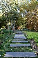 Landscaping design in the Botanical Gardens (Jardines Botanicos) by Architect Tatiana Bilbao, Culiacan, Sinaloa, Mexico