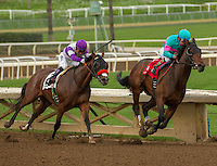 ARCADIA, CA  FEBRUARY 4:  #1 Royal Mo, ridden by Victor Espinoza, has the lead going into the stretch of the Robert B. Lewis Stakes (Grade lll) at Santa Anita Park on February 4, 2017, in Arcadia, CA(Photo by Casey Phillips/Eclipse Sportswire/Getty Images)