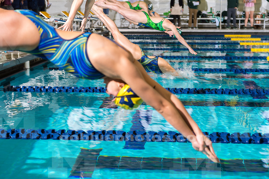 The University of Michigan women's swim and dive team; 180-81,victory over MSU at Canham Natatorium in Ann Arbor, Mich., on Feb. 06, 2016.