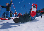 Two boys having fun while snowshoeing, where one has wiped-out with the parents as on-lookers, Rocky Mountains, Colorado