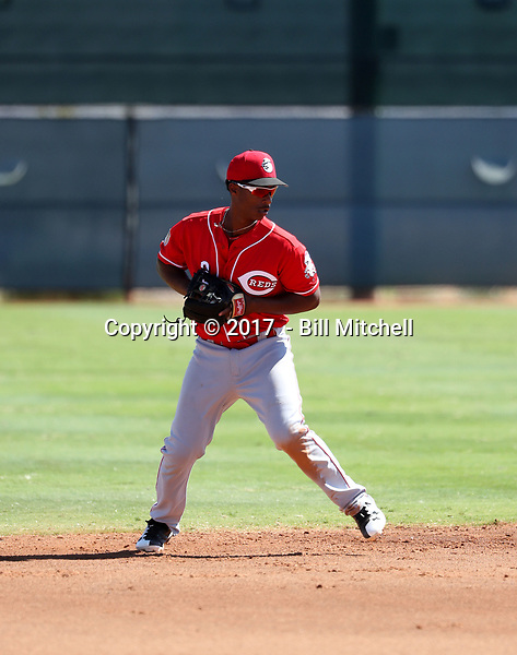 Jeter Downs - 2017 AIL Reds (Bill Mitchell)