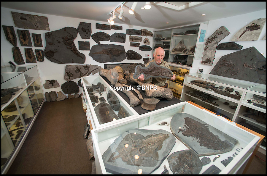 BNPS.co.uk (01202 558833)<br /> Pic: TomWren/BNPS<br /> <br /> Steve Etches in his garage where he keeps his fossil collection.<br /> <br /> A prolific fossil hunter who has spent 30 years digging up more than 2,000 Jurassic specimens is set to open a £5 million museum showcasing his collection. <br /> <br /> Steve Etches has become globally renowned in his field after accumulating the extensive set of exhibits, which includes rare samples from ancient species only recently discovered, at Dorset beauty spot Kimmeridge Bay.
