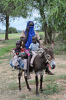CHAD, Guéra, Bitkine, village Korbo, traport with donkey / TSCHAD , Guéra, Bitkine, Dorf Korbo der Volksgruppe Hadjarai o. Hadjerai, Transport mit Esel, Frau mit Kindern