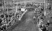 descending the Balenberg<br /> <br /> GP Sven Nys 2014