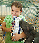 "Photo by Phil Grout..Miranda Iager of Woodbine seems to have her hands full with her Lamancha dairy goat.who can  smell the ""goat treats"" in the bag at the 4-H Fair exhibition building."
