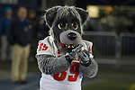The New Mexico mascot performs in the second half of an NCAA college football game against Nevada in Reno, Nev., Saturday, Nov. 2, 2019. (AP Photo/Tom R. Smedes)