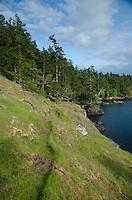 West Side of Jones Island State Park, San Juan Islands, Washington, US