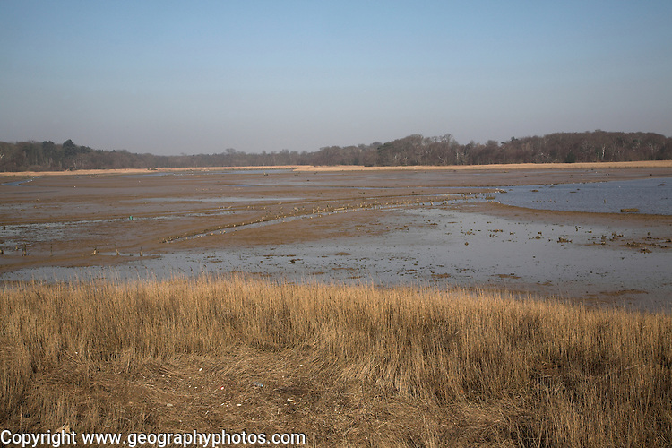 Benacre Broad, national nature, reserve, Suffolk, England
