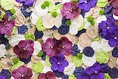 Saturday, 18 May 2013, London, UK. Planting and contruction work continues for the Chelsea Flower Show 2013 ahead of its opening next week. Picture: quilt made with flowers and wool.