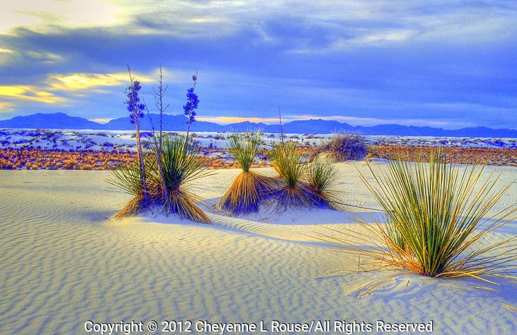 White Sands - New Mexico - White Sands NM, Alamagordo