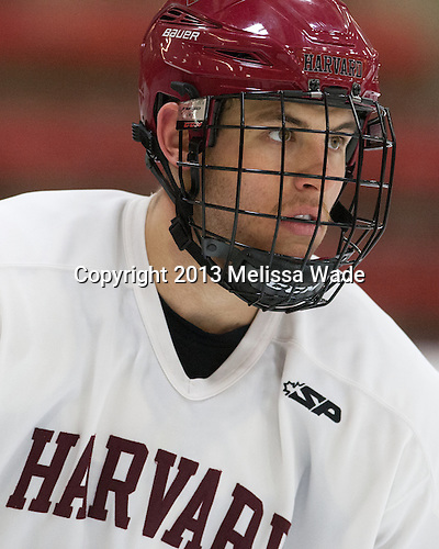 Greg Gozzo (Harvard - 13) - The Harvard University Crimson practiced on Friday, October 22, 2013, at Bright-Landry Hockey Center in Cambridge, Massachusetts.