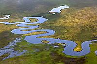 Aerial view of serpentine river, Alaska