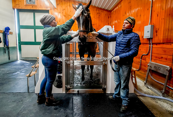 March 18, 2020 : A horse gets a treatment in the cold saltwater spa at the Fair Hill Equine Therapy Center. Life goes on at Fair Hill Training Center in Fair Hill, Maryland. While no spectators are allowed at any race facility in the United States, or the world essentially, during the coronavirus pandemic, the horses still need to train and exercise. The Fair Hill Trainer Center in Cecil County in Maryland is still open for business and the equine athletes remain active through the COVID-19 crisis. Scott Serio/Eclipse Sportswire/CSM