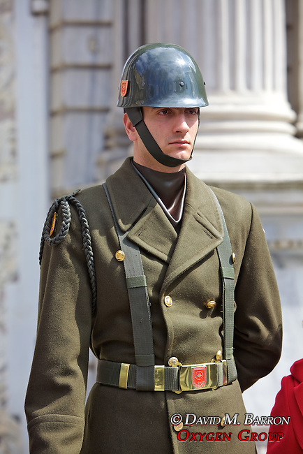 Guard At Dolmabahce Palace