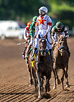 November 2, 2019: Mitole, ridden by Ricardo Santana Jr., wins the Breeders' Cup Sprint on Breeders' Cup World Championship Saturday at Santa Anita Park on November 2, 2019: in Arcadia, California. Michael McInally/Eclipse Sportswire/CSM