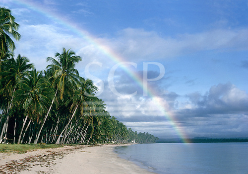 Recife, Pernambuco, Brazil. Palm-fringed beach with a rainbow.