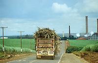 BRAZIL, Araras, Sugar industry USJ Sugar factory, production of sugar and ethanol alcohol for use as fuel for cars / BRASILIEN, Verarbeitung von Zuckerrohr bei USJ Usina São João Zuckerfabrik zu Zucker und Ethanol, der Alkohol wird als alternativer Treibstoff für Autos verwendet