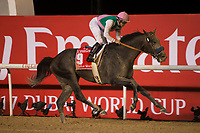 DUBAI,UNITED ARAB EMIRATES-MARCH 25: Arrogate,ridden by Mike Smith,wins the Dubai World Cup at Meydan Racecourse on March 25,2017 in Dubai,United Arab Emirates (Photo by Kaz Ishida/Eclipse Sportswire/Getty Images)