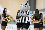 26 August 2011: Rex the Rhino, Rochester's mascot. The Harrisburg City Islanders defeated the Rochester Rhinos 2-1 in their USL PRO semifinal played at Sahlen's Stadium in Rochester, New York.