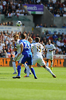 Saturday 22 September 2012 <br /> Pictured: Michu and Wayne Routledge<br /> Barclays Premiership, Swansea City v Everton at the Liberty Stadium, south Wales.