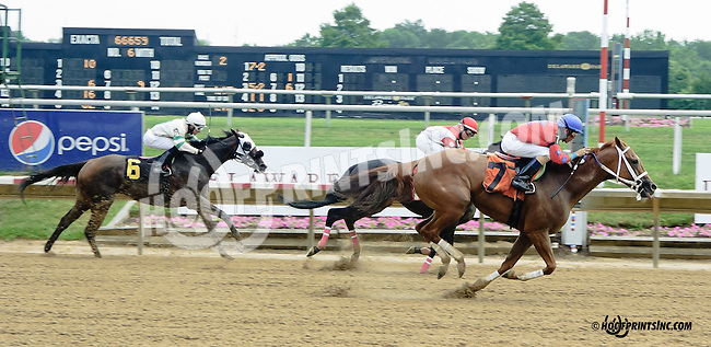 Prairie Trip winning at Delaware Park racetrack on 7/3/14