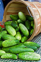 Fresh Food Locally Grown - Produce, fruit and veggies at Farmer's markets, from the farm to the table - Basket of Cucumbers