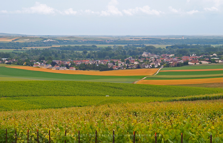 a view over the village and vineyards of Chouilly at the experimental vineyard of the CIVC at Plumecoq near Chouilly in the Cote des Blancs It is used for testing clones soil treatment vine treatments spraying, Champagne, Marne, Ardennes, France