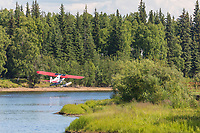 Bush plane on floats takes off from the Chena River in Interior Alaska's golden heart city of Fairbanks, Alaska