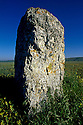 10/02/98 - CAUSSE MEJEAN - LOZERE - Menhir sur le Causse MEJEAN - FRANCE - Photo Jerome CHABANNE