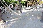 May, 2011..Montego Bay, Jamaica, Lucea, Jamaica..